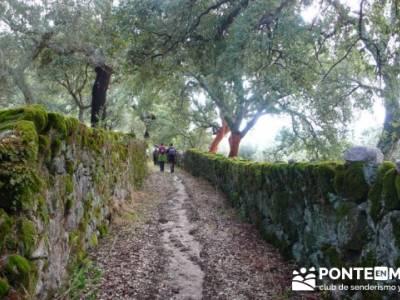 Parque Natural Naturtejo, conocer gente madrid; ruta la pedriza